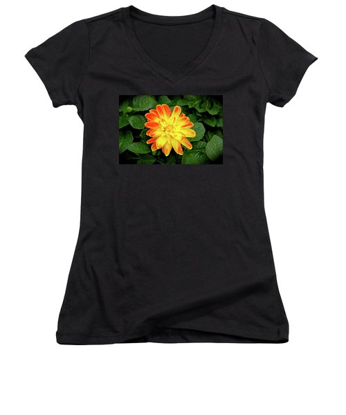 Dahlia Women's V-Neck T-Shirt (Junior Cut) by Ed  Riche
