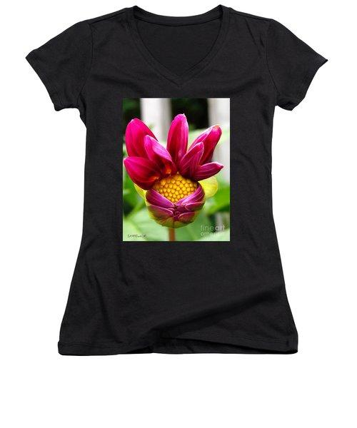 Dahlia From The Showpiece Mix Women's V-Neck T-Shirt (Junior Cut) by J McCombie
