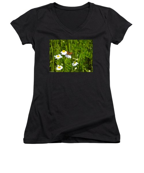Daisey And Butterfly Women's V-Neck (Athletic Fit)
