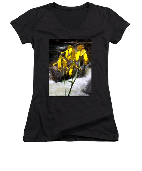 Daisies Near The Water  Women's V-Neck