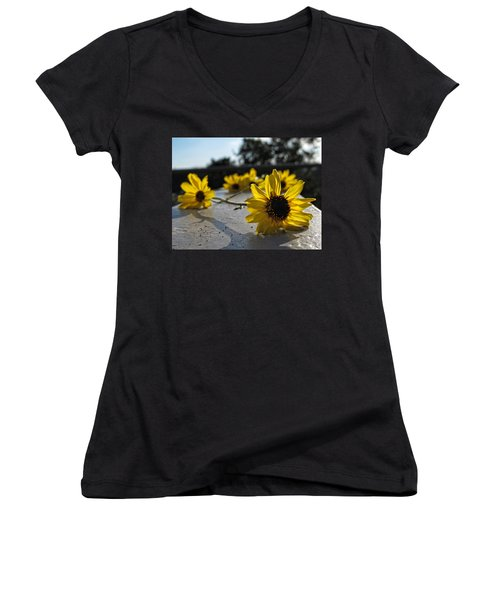Daisy Daisy Give Me Your Answer Women's V-Neck T-Shirt