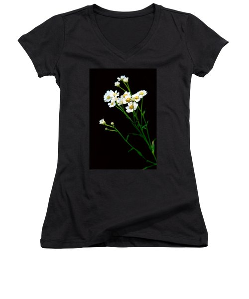Daisy Flower Bouquet  Women's V-Neck T-Shirt