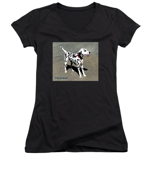 Dalmation Women's V-Neck (Athletic Fit)