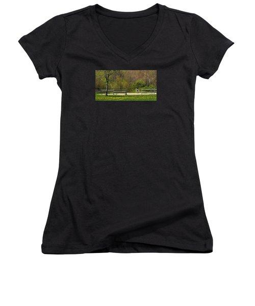 Women's V-Neck T-Shirt (Junior Cut) featuring the photograph Dandelion Dressage by Joan Davis