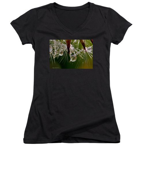 Dandelion Droplets Women's V-Neck T-Shirt