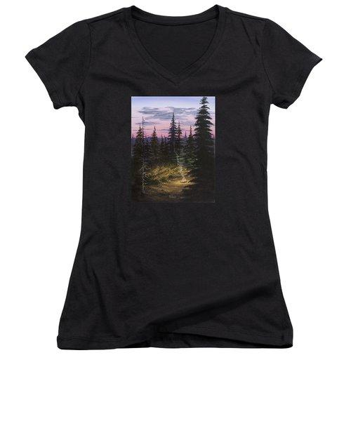 Dawn Fire Women's V-Neck T-Shirt (Junior Cut) by Jack Malloch