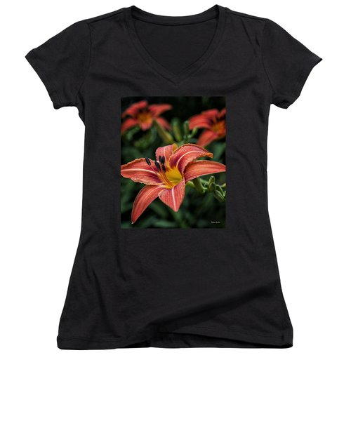 Day Lilies Women's V-Neck T-Shirt