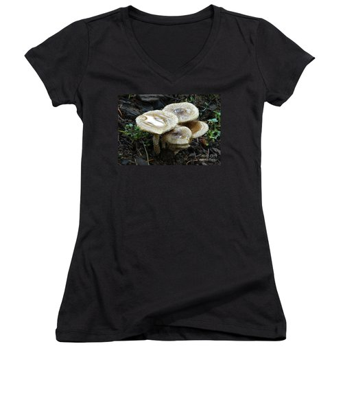 Women's V-Neck T-Shirt (Junior Cut) featuring the photograph Deadly Beauty 1 by Chalet Roome-Rigdon