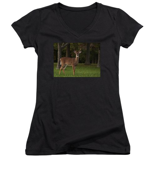 Women's V-Neck T-Shirt (Junior Cut) featuring the photograph Deer In Headlight Look by Tammy Espino