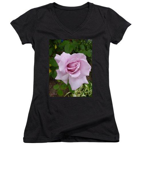 Women's V-Neck T-Shirt (Junior Cut) featuring the photograph Delicate Purple Rose by Lingfai Leung