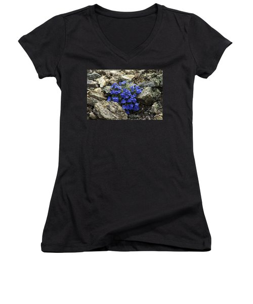 Women's V-Neck T-Shirt (Junior Cut) featuring the photograph Determination by Jeremy Rhoades