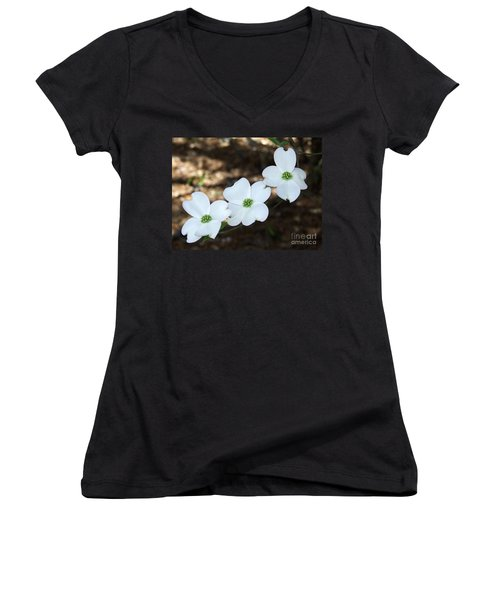 Dogwood Women's V-Neck T-Shirt (Junior Cut) by Andrea Anderegg