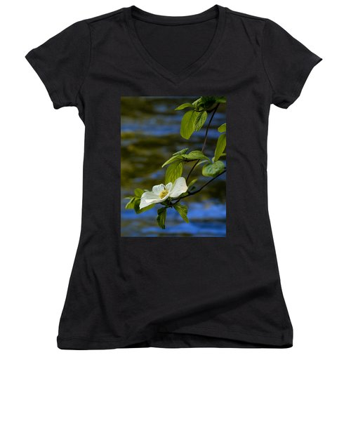 Dogwood On The Merced Women's V-Neck T-Shirt (Junior Cut) by Bill Gallagher