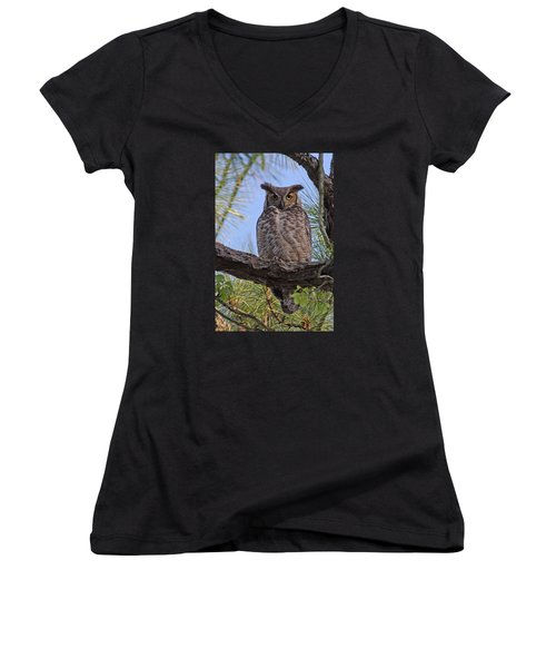 Women's V-Neck T-Shirt (Junior Cut) featuring the photograph Don't Mess With My Chicks #2 by Paul Rebmann