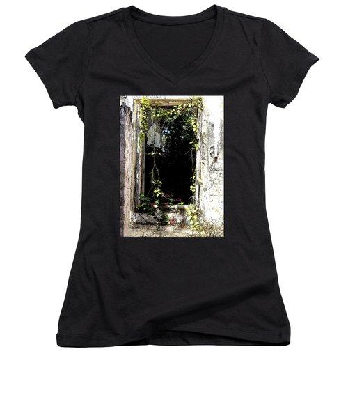 Doorway Delights Women's V-Neck T-Shirt