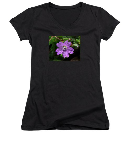 Wild Dovesfoot Cranesbill Women's V-Neck T-Shirt (Junior Cut) by William Tanneberger