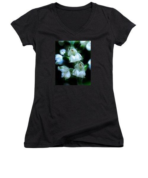 Downy Rattlesnake Plantain Orchid Women's V-Neck T-Shirt (Junior Cut)