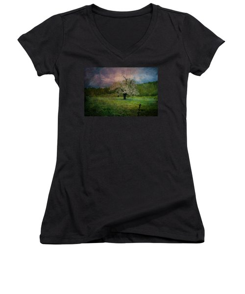 Dream Of Spring Women's V-Neck