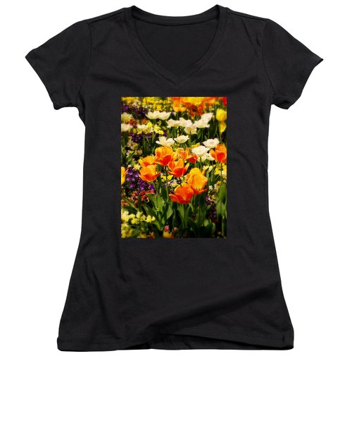 Dreaming In Color Women's V-Neck