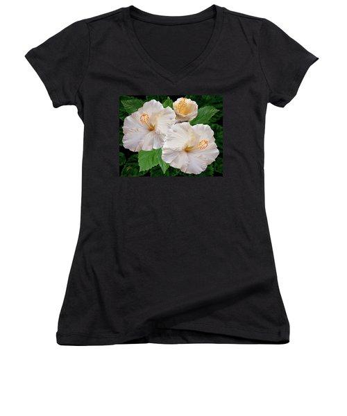 Dreamy Blooms - White Hibiscus Women's V-Neck T-Shirt (Junior Cut) by Ben and Raisa Gertsberg
