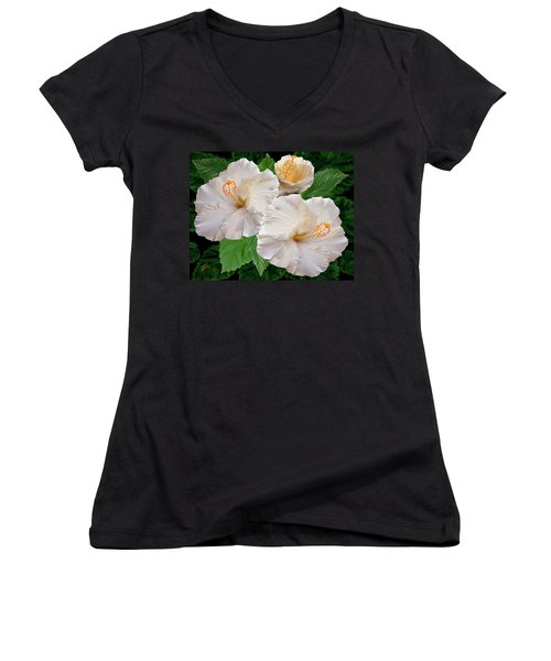 Dreamy Blooms - White Hibiscus Women's V-Neck T-Shirt