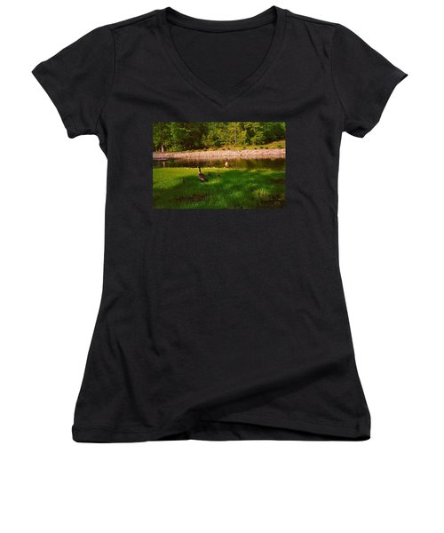 Duck Family Getting Back From Pond Women's V-Neck (Athletic Fit)