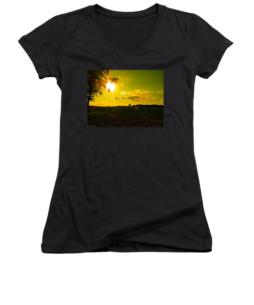 Duck Flying Low Cloud 2 Women's V-Neck (Athletic Fit)
