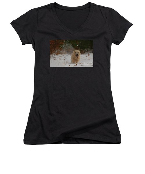 Dusted Women's V-Neck T-Shirt (Junior Cut) by Molly Poole