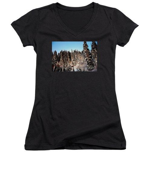 Dusting Women's V-Neck T-Shirt