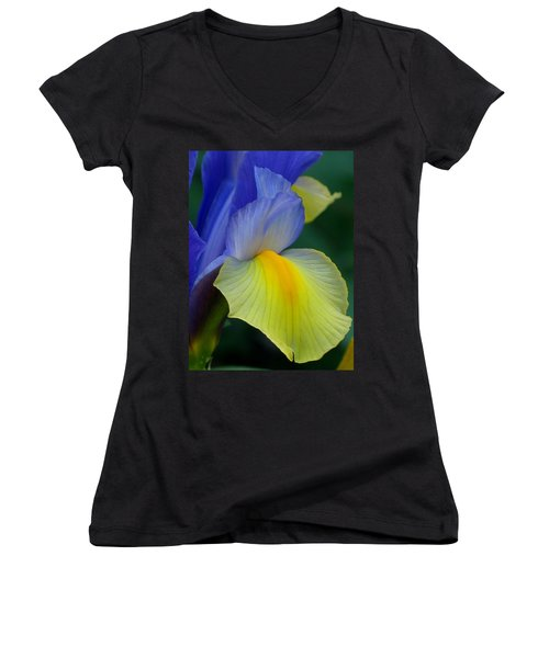 Dutch Beauty Women's V-Neck T-Shirt