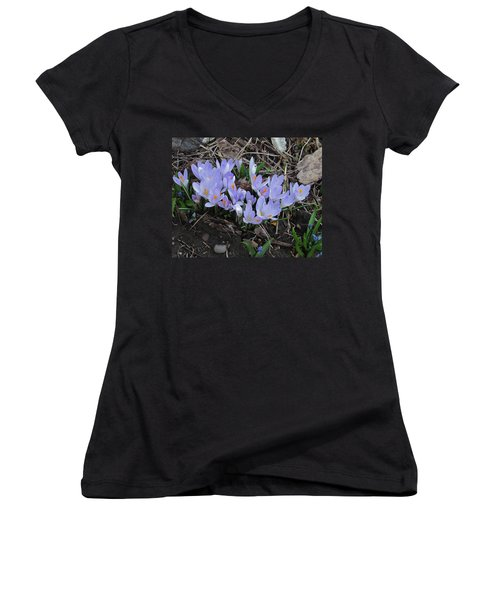 Early Crocuses Women's V-Neck T-Shirt (Junior Cut) by Donald S Hall