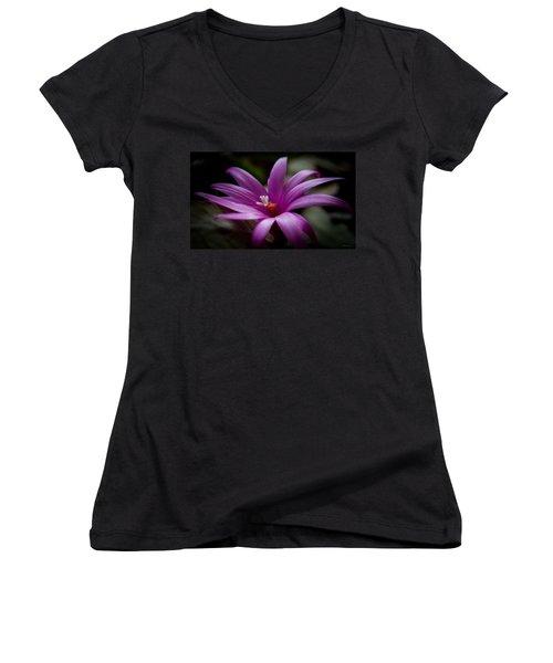 Easter Rose Women's V-Neck T-Shirt (Junior Cut)