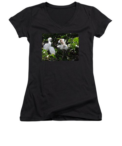 Egret Chicks Women's V-Neck T-Shirt