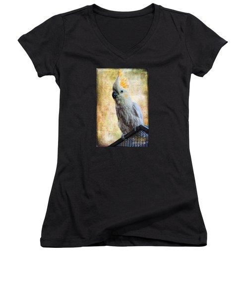 Elegant Lady Women's V-Neck T-Shirt