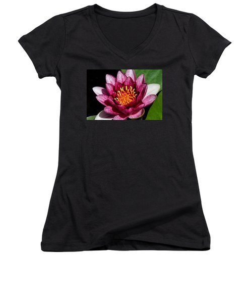 Elegant Lotus Water Lily Women's V-Neck (Athletic Fit)