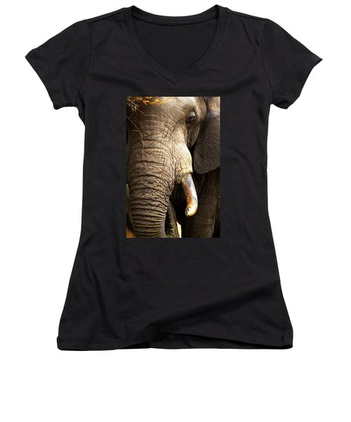 Elephant Close-up Portrait Women's V-Neck T-Shirt