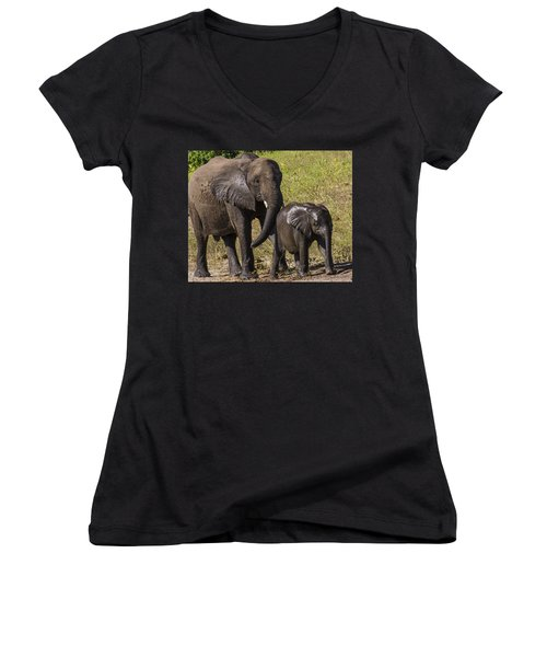 Elephant Mom And Baby Women's V-Neck (Athletic Fit)