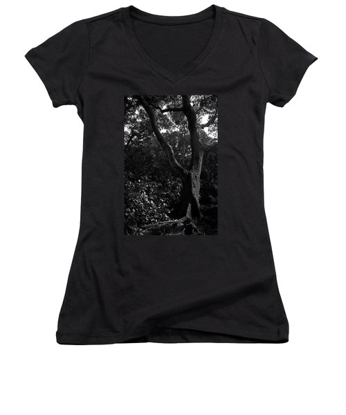 Women's V-Neck T-Shirt (Junior Cut) featuring the photograph Elizabethan Gardens Tree In B And W by Greg Reed