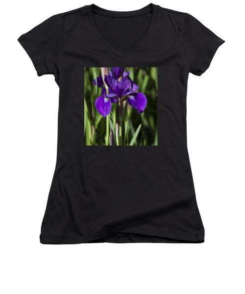 Eloquent Iris Women's V-Neck