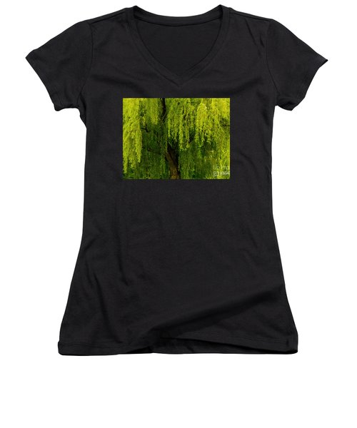 Enchanting Weeping Willow Tree  Women's V-Neck T-Shirt (Junior Cut) by Carol F Austin