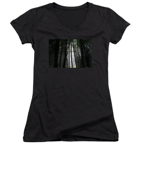 Women's V-Neck T-Shirt (Junior Cut) featuring the photograph Encounter Of The Vermont Kind No.2 by Neal Eslinger