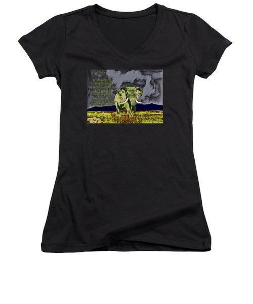 Endeavor  Women's V-Neck T-Shirt