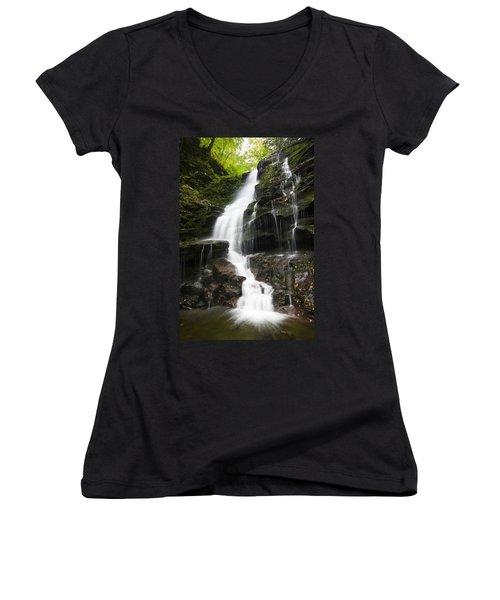 Erie Falls Women's V-Neck T-Shirt (Junior Cut)