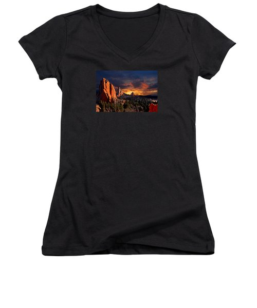 Evening Light At The Garden Women's V-Neck T-Shirt (Junior Cut) by John Hoffman