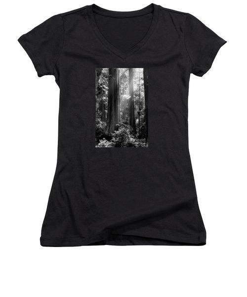 Evening Light Women's V-Neck T-Shirt (Junior Cut) by Mark Alder