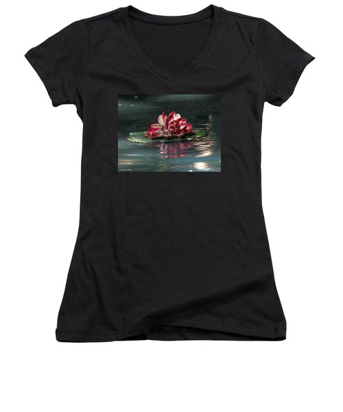 Women's V-Neck T-Shirt (Junior Cut) featuring the photograph Exquisite Water Flower  by Lucinda Walter