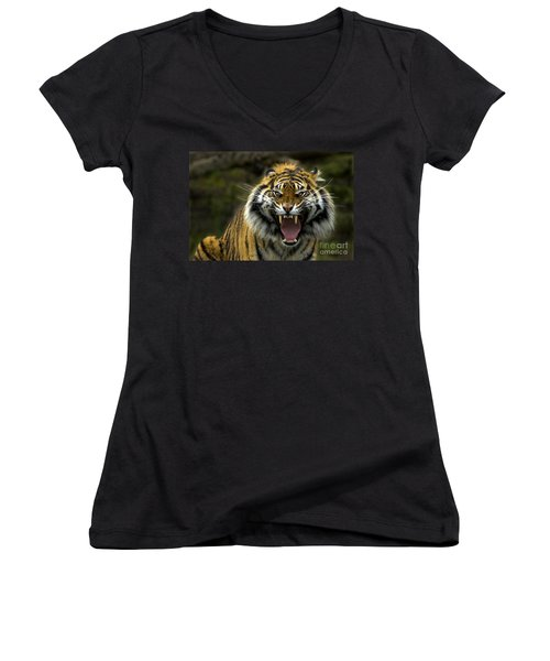 Women's V-Neck T-Shirt (Junior Cut) featuring the photograph Eyes Of The Tiger by Mike  Dawson