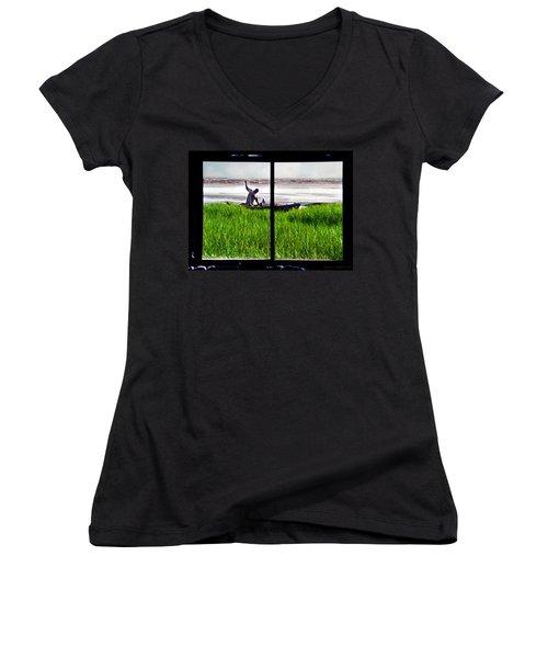 Fisherman Window Framed Women's V-Neck (Athletic Fit)