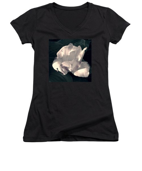 Women's V-Neck T-Shirt (Junior Cut) featuring the photograph Faded Beauty by Photographic Arts And Design Studio