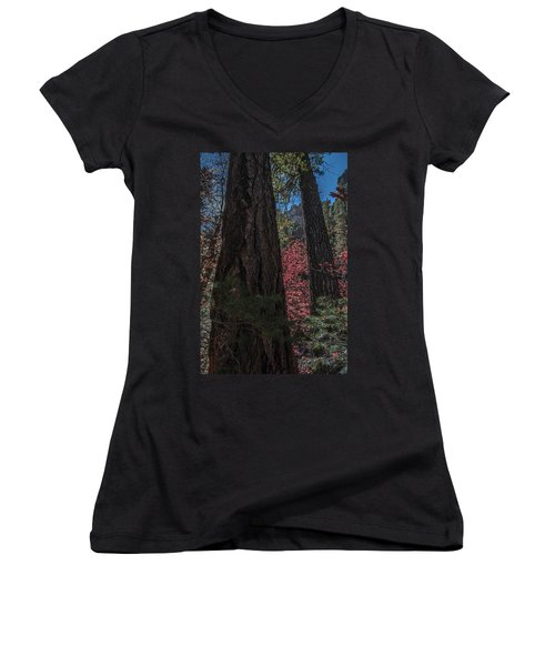 West Fork Perspective Women's V-Neck (Athletic Fit)